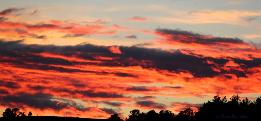 1029 sunset