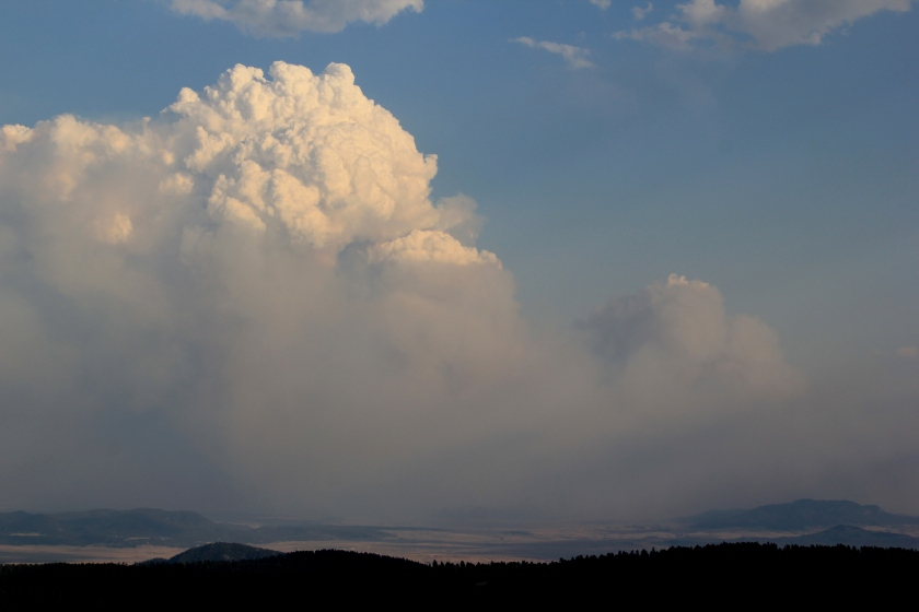 Cumulus cloud from fire